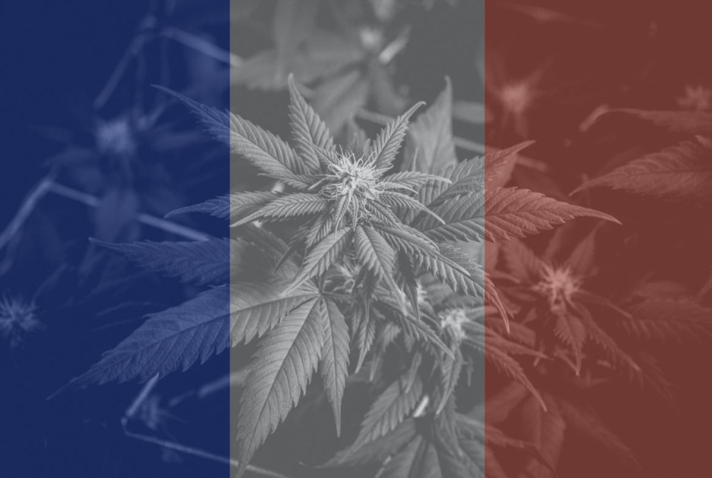 Acheter du CBD en France : comment en consommer légalement ?
